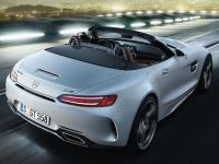 Mercedes-Benz MERCEDES-AMG GT ROADSTER nuevo Madrid